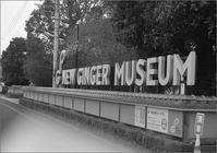NEW GINGER MUSEUM - n e c o f l e x