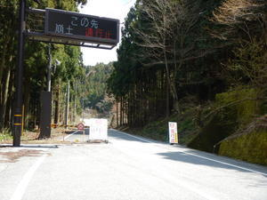 やっぱり福寿草を見に行っとく - K2 HAIR へようこそ               近江八幡市 美容室 美容院
