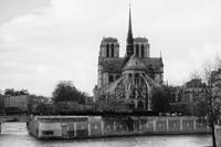 Pray for Notre-Dame Cathedral - S w a m p y D o g - my laidback life