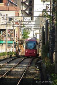 Tokyo Sakura Tram - Bamboobooのひとりごと