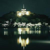 三渓園夜桜ライトアップ19.03.28 18:03 - スナップ寅さんの「日々是口実」