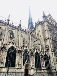パリノートルダム大聖堂の火災L'incendie de la Cathédrale de Notre-Dame de Paris - France33
