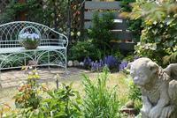 気持の良い陽気でお庭ランチとワクワク庭仕事 - miyorinの秘密のお庭
