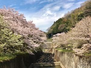 六甲山と瀬織津姫 225 日本第一の荒神社 - 追跡アマミキヨ