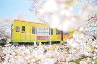 春色の汽車と女学生 - あ お そ ら 写 真 社