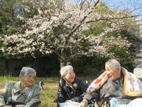 🌸芦風荘🌸お花見外出🌸 - 社会福祉法人 平成会
