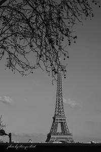 La tour Eiffel - Berry's Bird