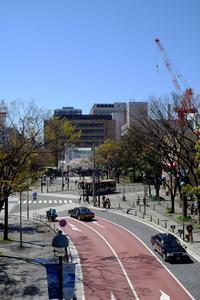 横濱紀行 12 山下公園 - 味わう瞬間 (とき)