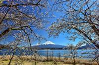 河口湖の春 - 風とこだま