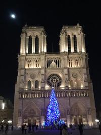 パリ・ノートルダム大聖堂 - piecing・針仕事と庭仕事の日々
