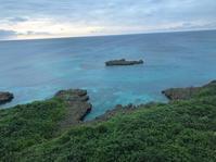南の島はパクチー天国 - おしゃれを巡る冒険