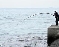 ボラ釣り - 風の吹くまま何でもシャッター