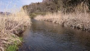 新規開拓ヤマメの里川 - 我が心の川