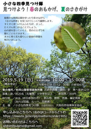 5/19、5/26 観察会のお知らせ - 昆虫ブログ むし探検広場