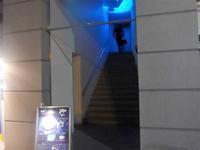 """神戸・三宮「bar shark」へ行く。 - 女性ゲームプロデューサーの""""旨い""""を探す大冒険「メシクエLV34」"""