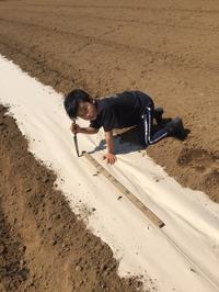 農業フリースクール便り(1) - 農業フリースクール「す・た・あ・と」