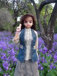花咲く森の道クマさんに出会った - mitsukiのお気楽大作戦