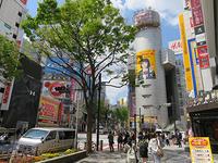 4月18日㈭の109前交差点 - でじたる渋谷NEWS