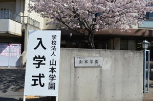 入学式 - ヤマガクマ☆日記☆