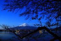 31年4月の富士(12)河口湖の桜と富士 - 富士への散歩道 ~撮影記~