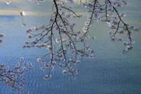 湖畔に耀く - 風の彩り-2