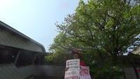 「庶民の懐に優しい政治」をガツンと広島3区から - 広島瀬戸内新聞ニュース(社主:さとうしゅういち)