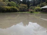 赤い葉は、、。奥までどうぞ。 - 千葉県いすみ環境と文化のさとセンター
