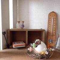タマカラアレンジ - 森の工房 Flower Work ナチュラルスローな空間