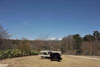 桜を求めて蒜山へ その①:雪を被った大山に会えたよ(4月13日)✩ - Reon with LR & Roses