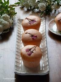桜蒸しパンと、下界を見下ろす猫♪ - Cache-Cache+