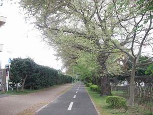 また、春の景色 - 埼玉の空より