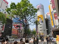 4月19日㈮の109前交差点 - でじたる渋谷NEWS