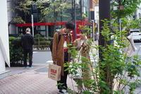shopping - summicron