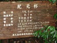 屋久島-3 - Lock-design.