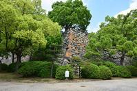 漆黒の烏城、備前岡山城を歩く。その2「本丸下の段」 - 坂の上のサインボード