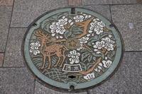 【達磨寺】奈良旅行 - 16 - - うろ子とカメラ。