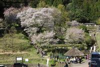 宇陀市仏隆寺 - ぶらり記録 2:奈良・大阪・・・