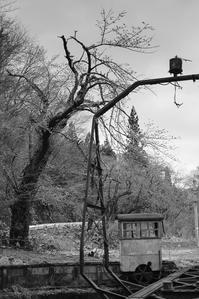 春まだ遠い山寺の転車台 - Film&Gasoline