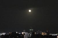 十六夜の月 - そらいろのパレット