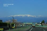 SAKURA*2019その7 (三春滝桜・前編) - FUNKY'S BLUE SKY
