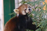 2回目の羽村市動物公園 - 動物園に嵌り中