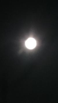 平成最後の満月 - 鴎庵