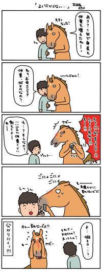 お母さんは競走馬。〜基準が〜 - おがわじゅりの馬房