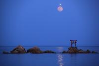 大分県奈多海岸で平成最後の満月を撮影に、、、2019 4月 - 優柔不断なAB型男の独り言 THE dream room.