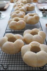 レッスンと試作が続いています♪ - launa パンとお菓子と日々のこと
