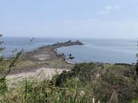 真鶴半島を歩く 2019年春 - 散歩ガイド