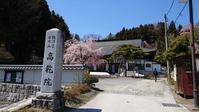 三春の桜巡り高乾院@福島県三春町 - 963-7837