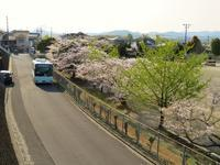 中央中裏門(ちゅうおうちゅううらもん) - さつませんだいバスみち散歩