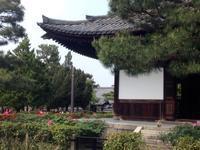 「京都国際写真祭KYOTOGRAPHIE」と建仁寺花盛り - MOTTAINAIクラフトあまた 京都たより