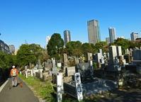 <変貌する都市>2019年港区 - 写真家藤居正明の東京漫歩景